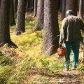 У Житомирській області розшукали двох грибників, які добу блукали лісом