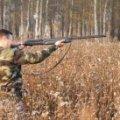 За кілька днів у Житомирській області відкриється сезон полювання на копитних та хутрових звірів