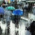 28 октября по всей Украине пройдут дожди