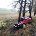 На Житомирщині через погіршення погоди легковик в'їхав у дерево біля дороги