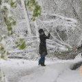 Сегодня днем, 31 октября, в большинстве регионов пройдет мокрый снег с дождем