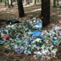 Житомирянин заплатить штраф за викинуте в Івницькому лісі сміття