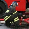 Сумна статистика: від пожежі цього місяця на Житомирщині загинуло вже 14 осіб