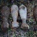 У Радомишльському районі грибники знайшли мінометні міни