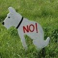 Штраф за выгул собак в неположенном месте хотят поднять в несколько раз