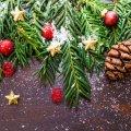 """До уваги житомирян: відтепер """"католицьке"""" Різдво теж може стати вихідним"""