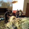 Житомирський рибоохоронний патруль знищив понад 18 км заборонених знарядь лову