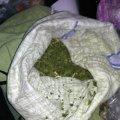 Поліцейські виявили 0,5 кг наркотиків у квартирі 38-річного житомирянина