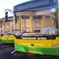 Тендер із закупівлі сучасних автобусів для Житомира затягують навмисно, – Дмитро Ткачук