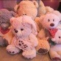 160 кг плюшевих ведмедиків незаконно перетнули кордон України, – житомирська митниця