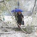 В выходные в Украину придет снежная зима