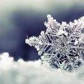 Вихідними у Житомирі буде мінлива погода: холодно, а потім потепліє