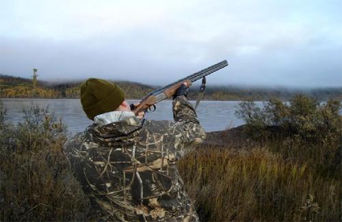 Поважні гості на полюванні у Романівському районі підстрелили лісника?