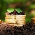 У Житомирській ДФС нагадали, що з 1 січня на 11,2% зросли ставки екологічного податку