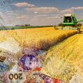 Житомирщина займає 4 місце в Україні за темпами приросту сільськогосподарської продукції