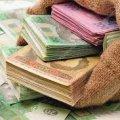 На Житомирщині чиновника, який розтратив 300 тис грн бюджетних коштів, відсторонили від посади та взяли під домашній арешт