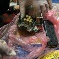 В оселях підозрюваних у крадіжках на Житомирщині знайшли боєприпаси, наркотики і прикраси