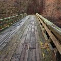 На Житомирщині чоловік побився об заклад і пригнув з мосту
