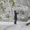 Сегодня днем, 30 января, в Украине до 10 градусов тепла
