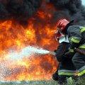 З початку року на пожежах в Україні загинуло вже 264 людини