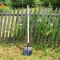Розібратись по-сусідськи: у Бердичеві два господарі «вирішили» суперечку за допомогою біти та лопат