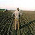 Більше півмільйона Житомирська ОДА планує витратити на ферми і кооперативи