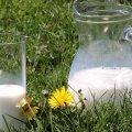 """Молоко """"убивает"""" красоту и молодость"""