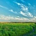 Житомирська ОДА змінила кошторис витрат на екологію області