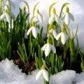 Синоптик рассказала о надвигающемся на Украину потеплении