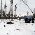 На Житомирщині взяли під варту банду лісорубів, які напередодні стріляли у поліцейських