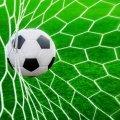 Більше 2,5 млн грн з обласного бюджету спрямують на розвиток футболу на Житомирщині