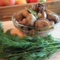 Маринованные грибы быстрого приготовления: рецепты, которые стоит попробовать