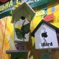 Шпаківні із цементу і тирси, з найвідомішими брендами та різних кольорів: у Житомирі пройшла виставка будиночків для птахів