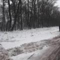 """Похоронний автобус із покійником не може доїхати на цвинтар """"Дружба"""" під Житомиром"""