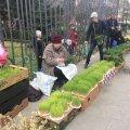 Вербна неділя у Тбілісі. ФОТО