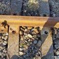 У себе під ногами: 25-річний хлопець регулярно крав колії на активній залізничній гілці