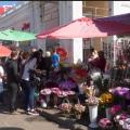 Житомирянам дозволили перед Великоднем почати сезонну торгівлю квітами та саджанцями біля Житнього ринку