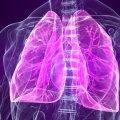 Вчені навчилися за допомогою стовбурових клітин лікувати серйозну хворобу