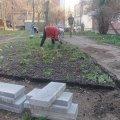 Висаджують квіти, кронують дерева: житомиряни активно взялися за благоустрій своїх дворів