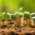 З початку року місцеві бюджети Житомирської області отримали більше 102 млн грн податків за землю