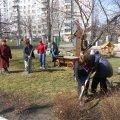 У Житомирі відбудеться щорічна екологічна акція «Квітучий сквер»