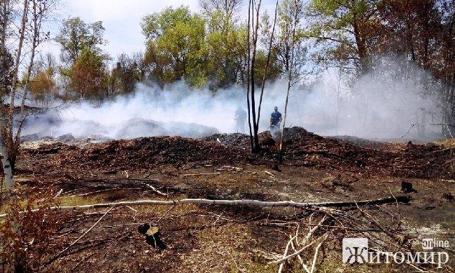 У Народницькому районі горіли сміття і трава на площі 4 га. ФОТО
