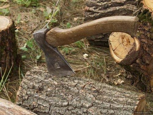 """В Олевську троє """"чорних"""" лісоруби погрожували фізичною розправою та чинили опір лісовій охороні"""