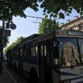 У центрі Житомира стоять тролейбуси через те, що немає напруги