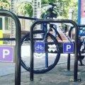 Містяни просять посадовців створити велодоріжки у всьому Житомирі