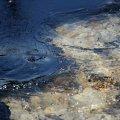 """У Бердичеві """"на гарячому"""" затримали водія асенізатора, який зливав нечистоти у місцеву водойму"""
