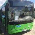 Автобусы МАЗ, которые купили Житомиру, используют не по назначению. Активисты требуют объяснений