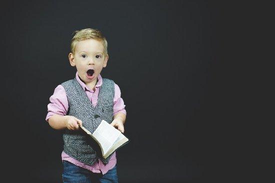 У Житомирі діятиме дитячий табір для книголюбів