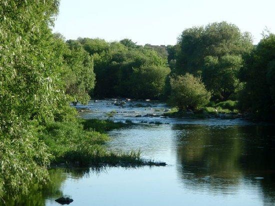 На заходи з відновлення санітарного стану русла річки Тетерів міська рада витратить 700 тис грн