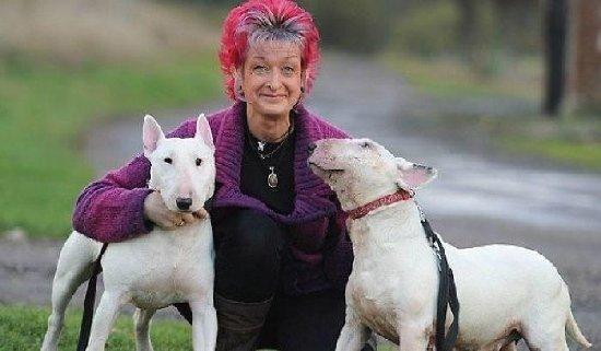 """Чоловік поставив дружині ультиматум: """"Я або собаки"""". Вона обрала собак"""